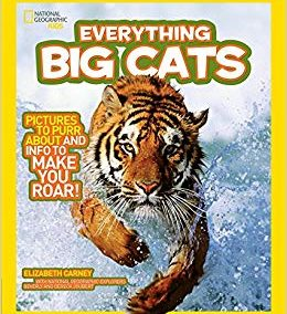 Nat Geo-Everything Big Cats