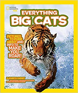 Everything Big Cats – National Geographic