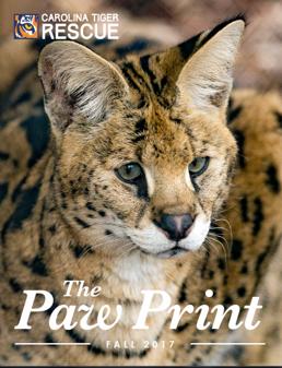 Fall 2016 Paw Print