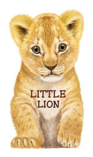 Little Lion – Barron's Educational Series