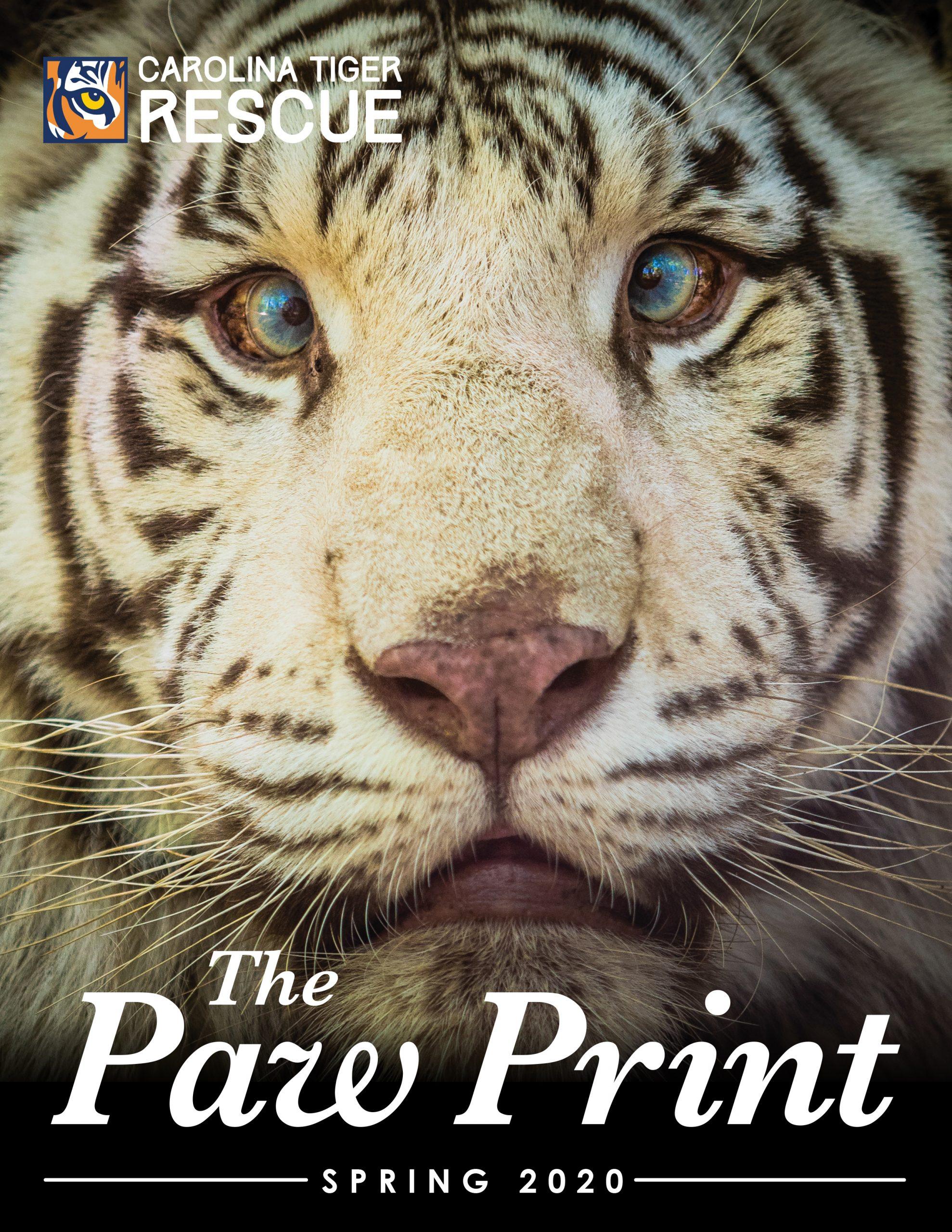 Spring 2020 Paw Print