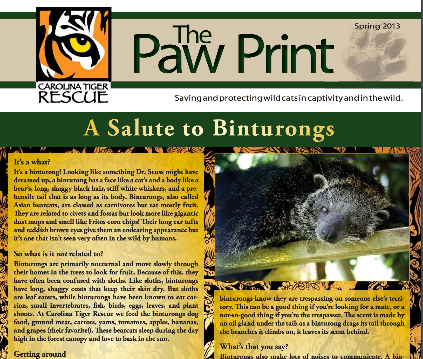 Spring 2013 Paw Print