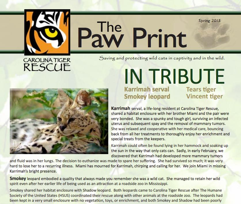 Spring 2015 Paw Print