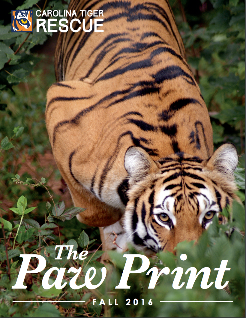The Paw Print - Carolina Tiger Rescue