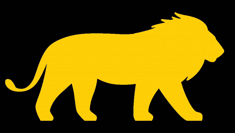 Lion at Carolina Tiger Rescue